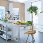Excellent Kitchens by Schueller