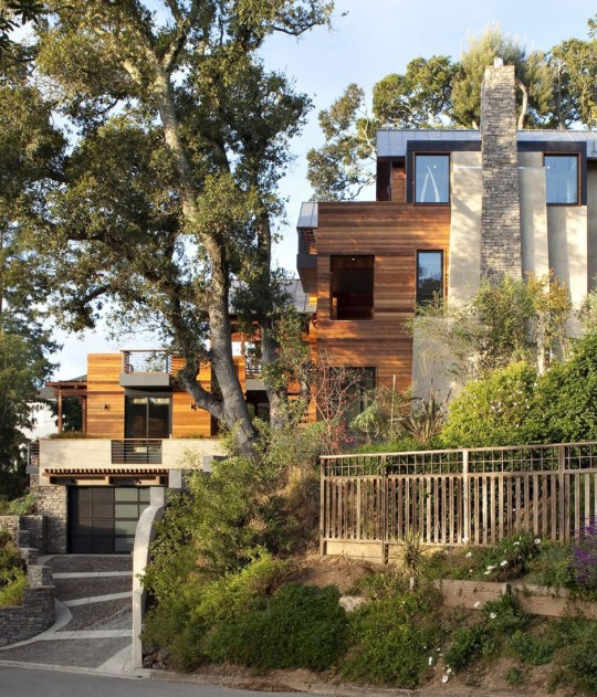 The Extraordinary Hillside House