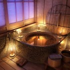 Bathroom Scene Night Time Rustic Bathroom with Flower Bath by-Mr Hahn