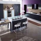 Black and Purple Colored Kitchen Design