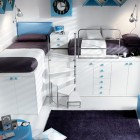 Blue Bunk Beds and Lofts Design for Kids with Black Rugs