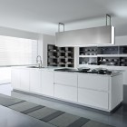 Contemporary Pedinusa Kitchen with Built in Cabinetry