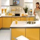 Contemporary Yellow Kitchen Decoration