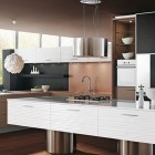 ContemporaryBrown Kitchen Design 2011