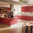 ContemporaryRed Kitchen Design Ideas