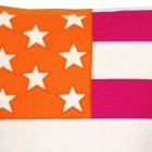 Cool Clean American Flag Orange Pink