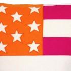 Cool Clean American Flag Orange Pink