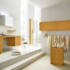Design ideas best golden bathroom with cream rug home design