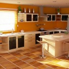 Fresh Orange Themed Kitchen Design