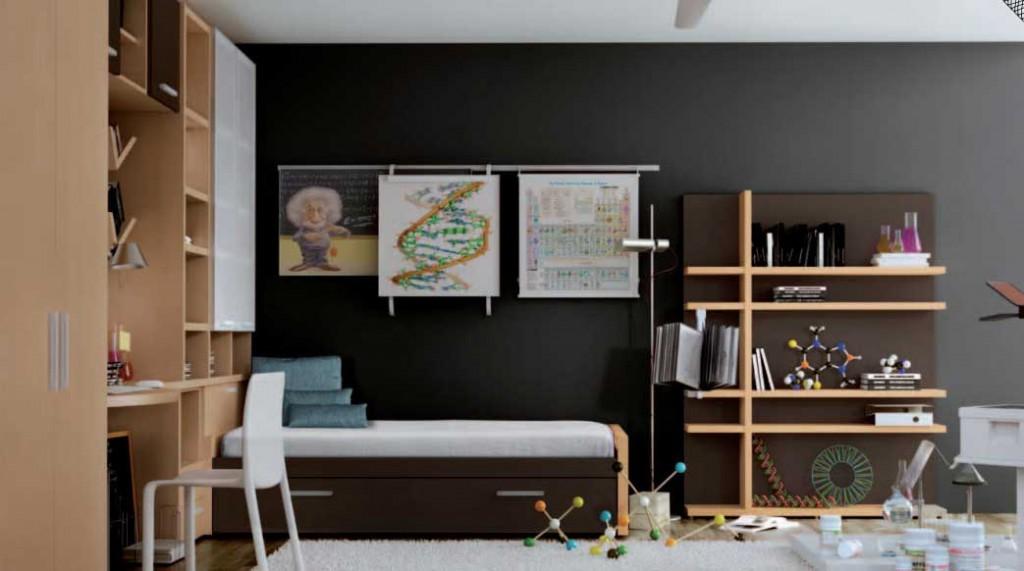 Genius kids room with einstein poster 1024x571