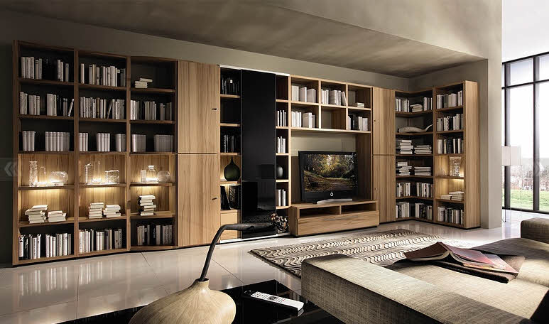 Living Room with Big Bookcase Design Ideas