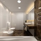 Modern Classic Bath Earth Tones Design Ideas