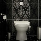 Modern Classic Black and White Tile Toilet Details