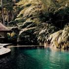 Natural Waterfalls Como Shambhala Resort