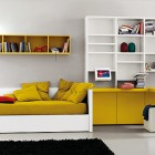 Ochre White Bed Room with Bookcase and Black Rug