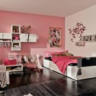 Pinky Trendy Teen Bedroom
