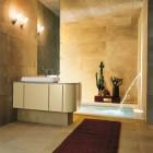 Top Design Modern Bathroom Cactus Plant