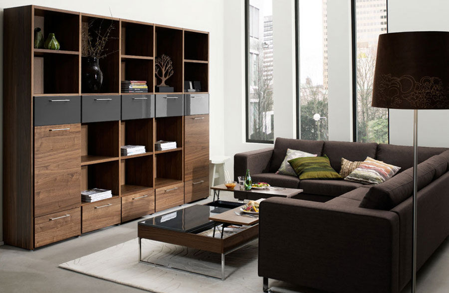 Amazing Living Room Shelf
