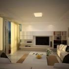 Comfort Living Room Coffer Ceiling Ideas