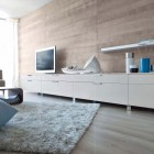 Contemporary Living Room eith Wooden Wall and LCD TV Set