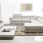 Contemporary Living Room with White Sofa Set