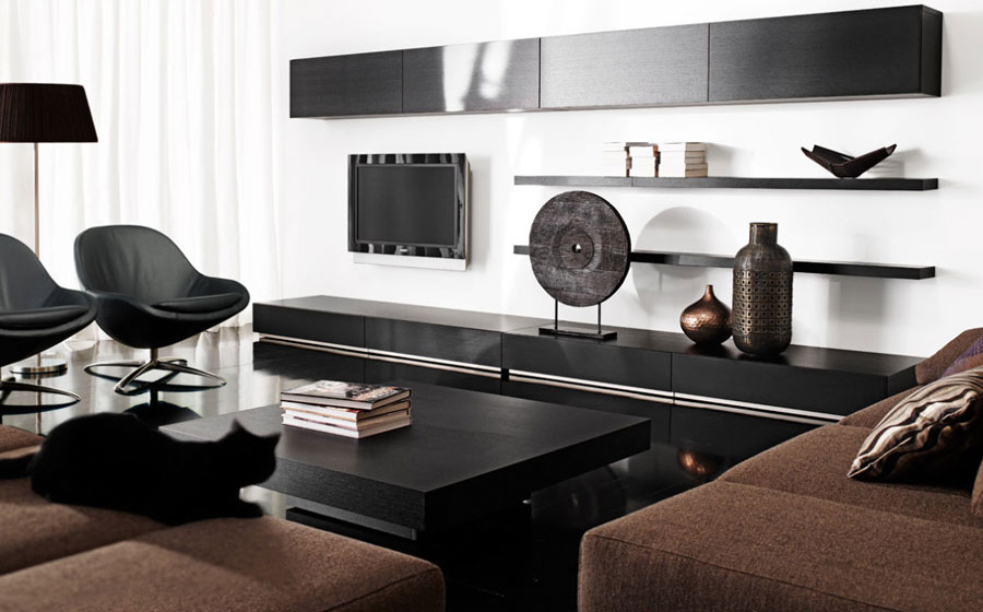 Elegant Black and White Living Room Decorations