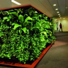 Fresh Room with Green Wall Decorations