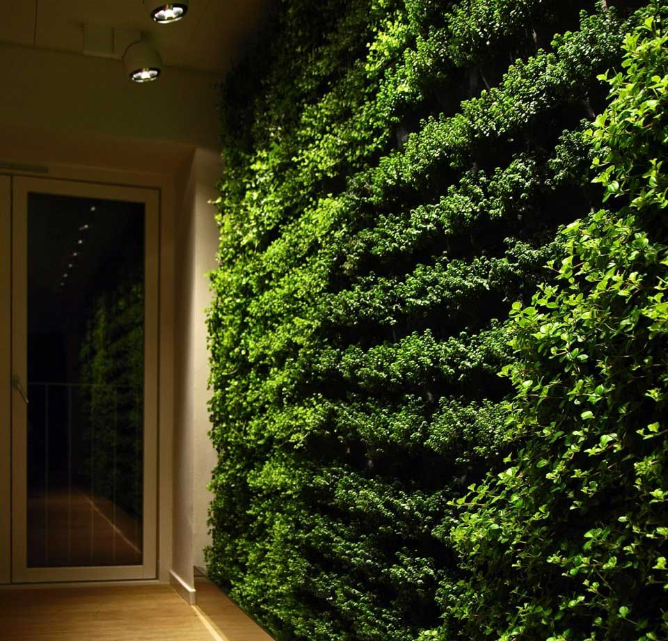 Go green with green wall for home interior design ideas Decorating green walls
