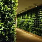 Green Wall Corridor Decoration