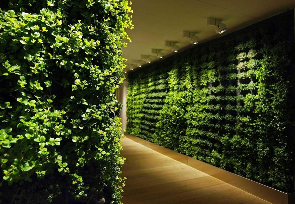 Green Wall Corridor Decoration Interior Design Ideas