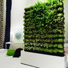 Mobile Green Wall Decoration