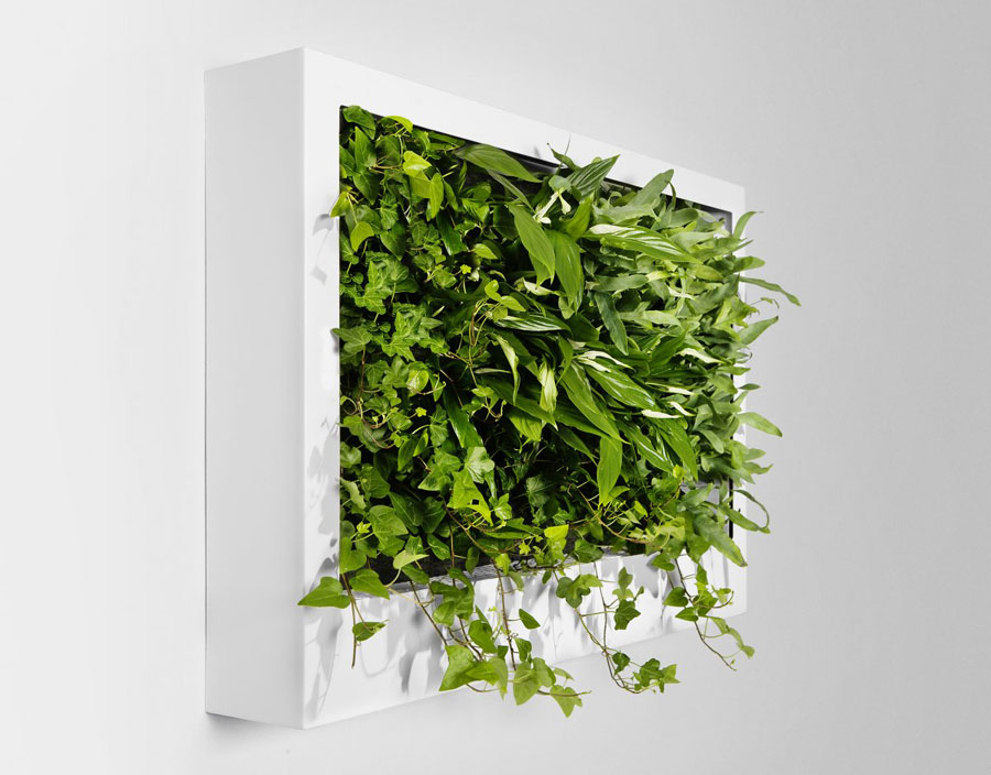 Portable Green Wall Design Ideas Interior Design Ideas