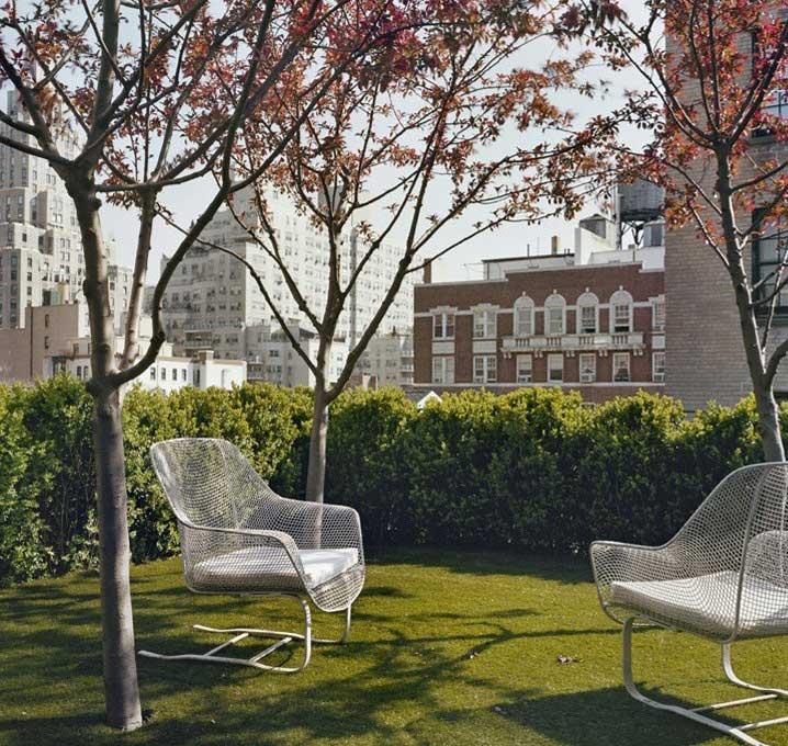 Rooftop Urban Garden Oasis
