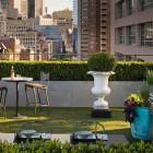 Fresh and Beautiful Urban Gardens