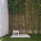 Urban Garden with Bamboo Wall Decoration