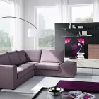 Contemporary Living Room With Sofas Plums Color
