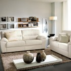 Dark Floors and Neutral Furniture in Living Room Ideas