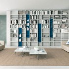 Grey and Blue Book Shelves Living Room