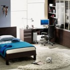 Cool Student Room Design Ideas