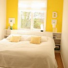 Beautiful White and Yellow Color Design