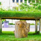 Unique Denver Eco Office Tree Stump Chair Design Ideas