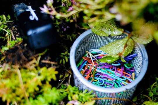 Weird Denver Eco Office Supplies