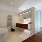 Clean Luxury Bathroom with Wood Floor