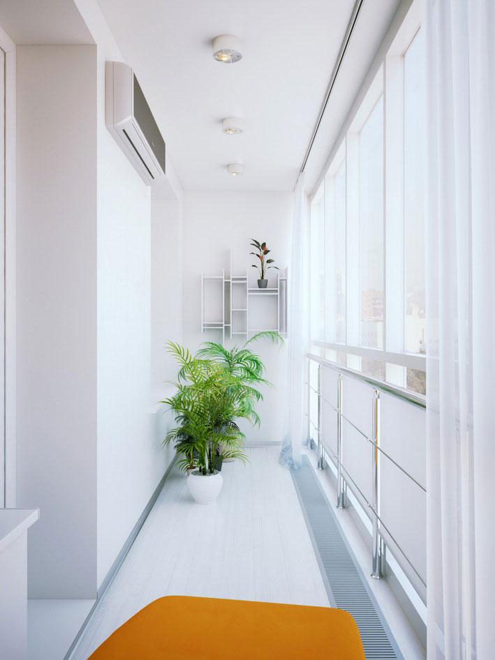 Fresh White Corridor Plant