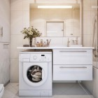 Practical White Sink with Washing Machine
