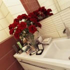 Red Roses on the Bathroom Vanity