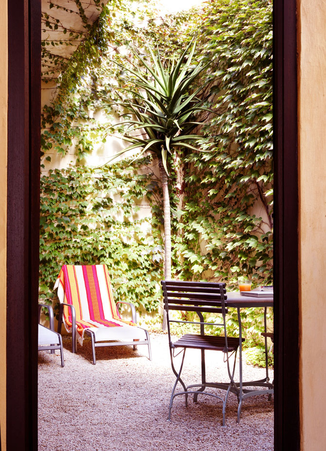 Small Courtyard with Palm Tree and Outdoor Chair