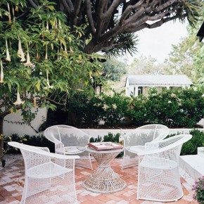 White Patio Furniture Under the Trumpet Flower Tree