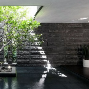 Lightwell Stone Cladding Iindoor Pond Ideas