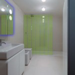 Modern Neon Wet Room Design